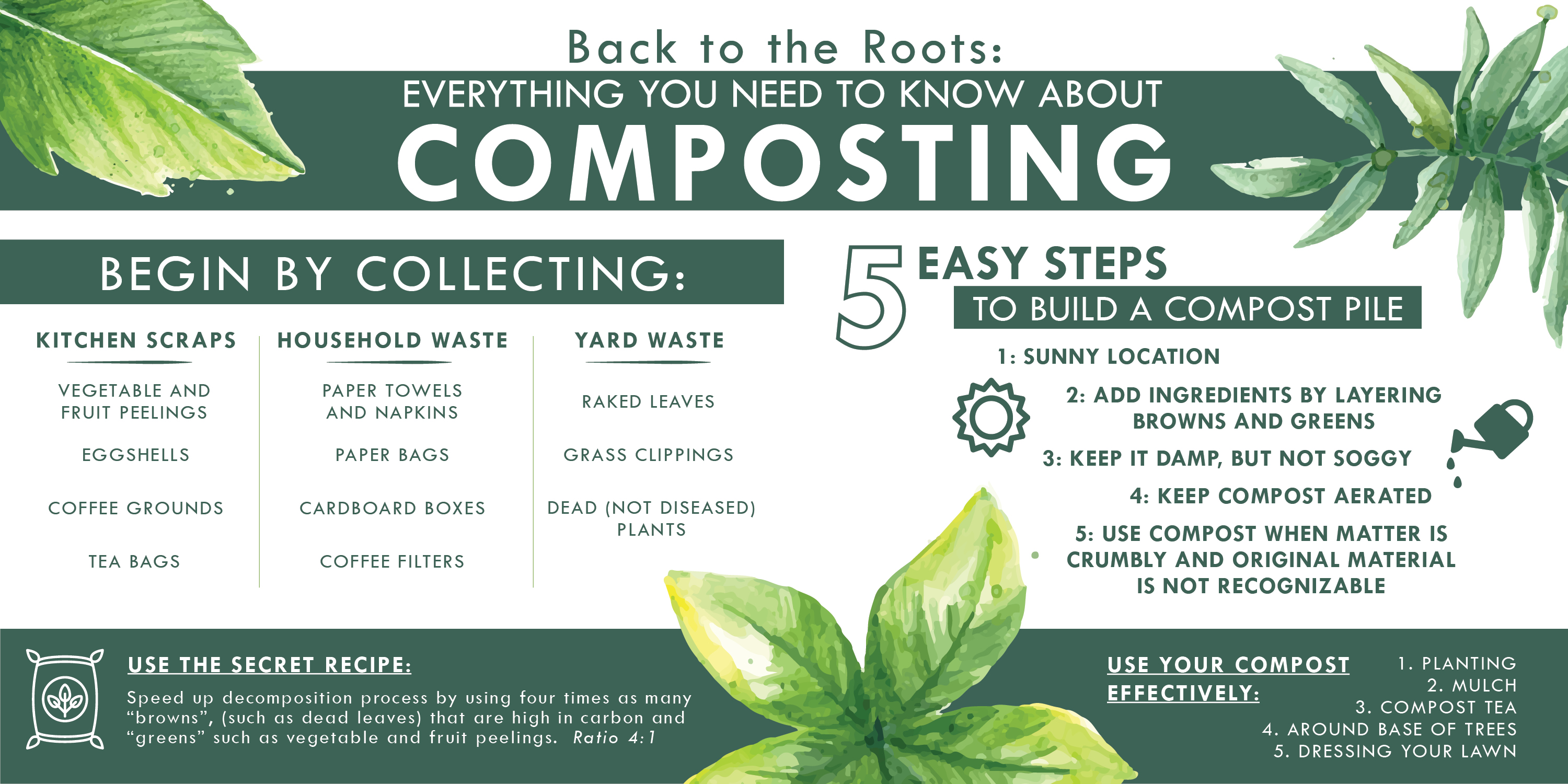 Everything You Need to Know About Composting