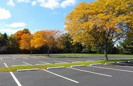 parking lot with fall trees
